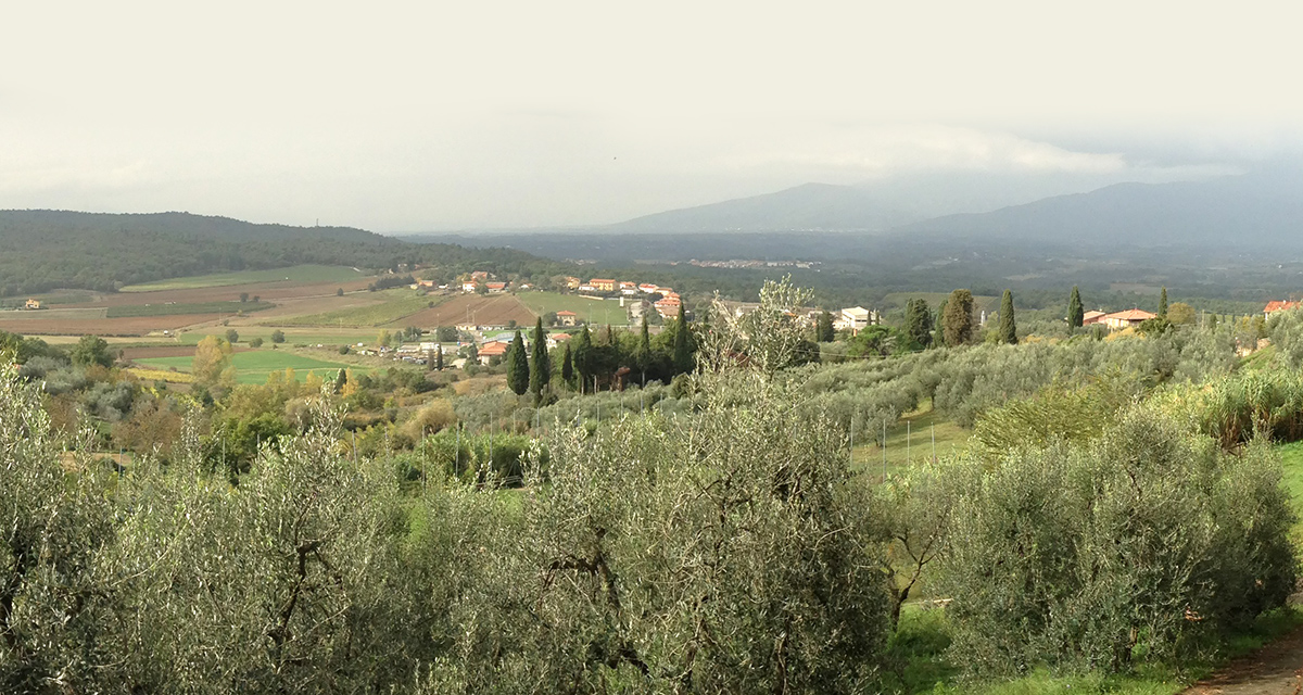 (English) La pensionada: Bed and breakfast in Tuscany